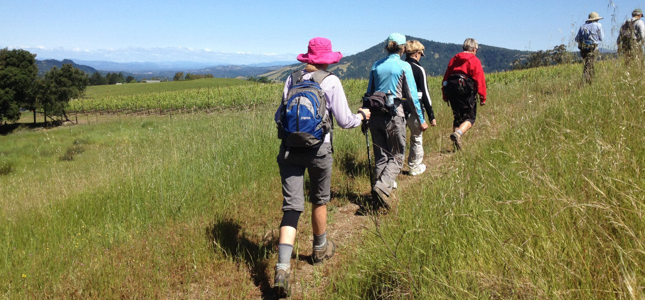 Sonoma-Mountain-Ridge-Trail-Hike