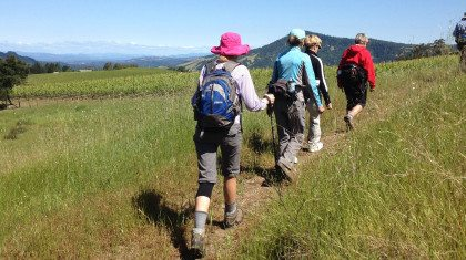 Sonoma-Mountain-Ridge-Trail-Hike